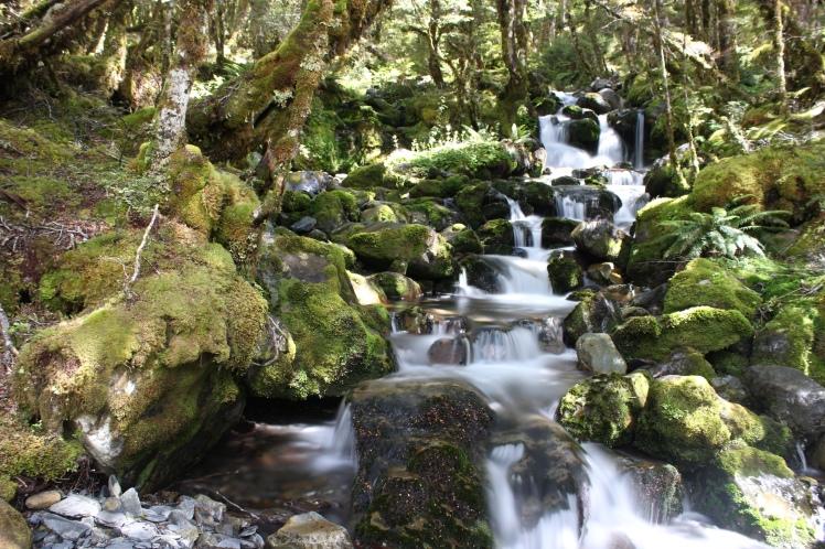 Einer von vielen wunderschönen Wasserfällen im Nationalpark